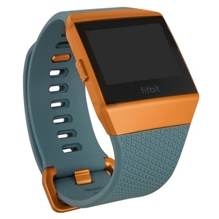 Fitbit Fitbit Ionic schiefergrau/kupfer | Fitbit Ionic